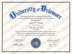 Degree - University of Delaware