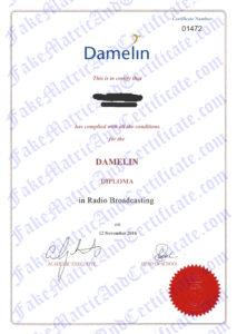 Diploma - Damelin