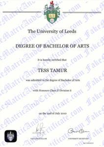 Degree - The University of Leeds